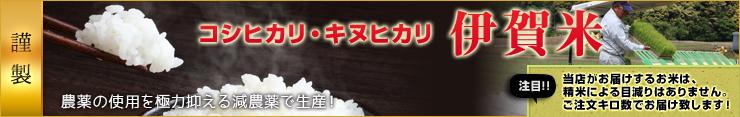 伊賀米 コシヒカリ・キヌヒカリ