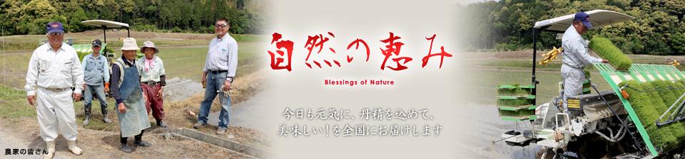 自然の恵み